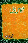 Urdu Novel Akass Bail by Shireen Haider
